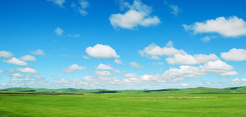 风景,全景,平原,农业,草坪,云景,云,草,中国,植物