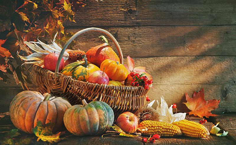 南瓜,背景,秋天,农作物,葫芦,十月,有机农庄,多汁的,南瓜属,桌子