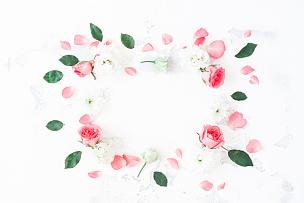 边框,玫瑰,平铺,白色背景,留白,高视角,古典式,夏天,乡村风格,lisianthus