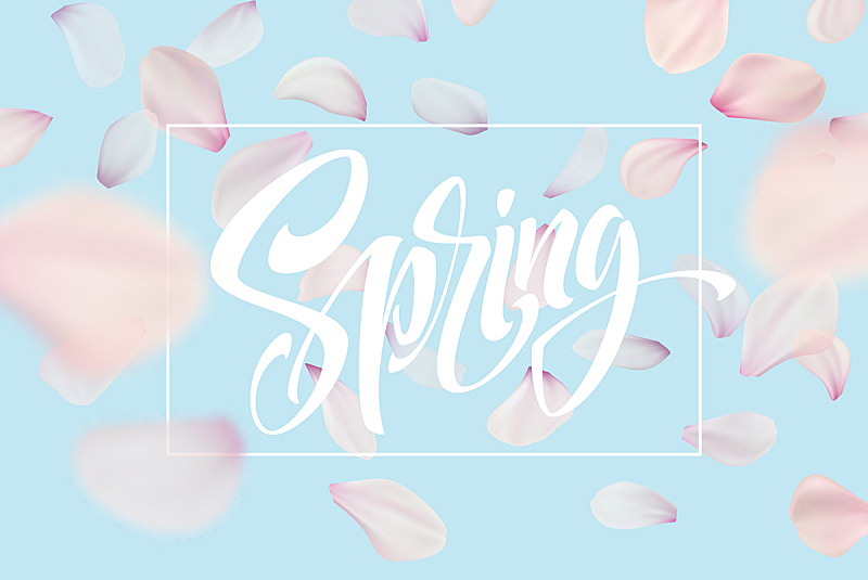 天空,绘画插图,矢量,粉色,背景,樱花,式样,蓝色,文字