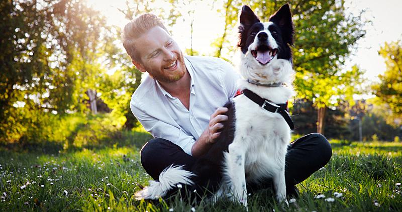 狗,男人,业主,寻回犬,水平画幅,进行中,夏天,户外,白人,草