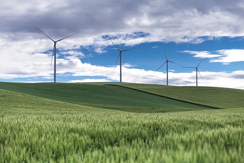 绿色,风轮机,丘陵地带,美国,水平画幅,风力,无人,户外,环保人士,帕卢斯