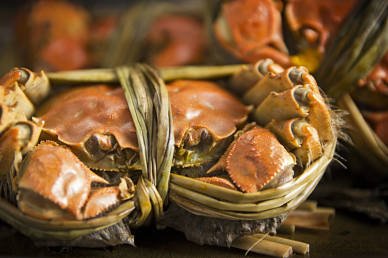 螃蟹,多毛的,大闸蟹,动物毛发,上海,水平画幅,生食,海产,特写,晚餐