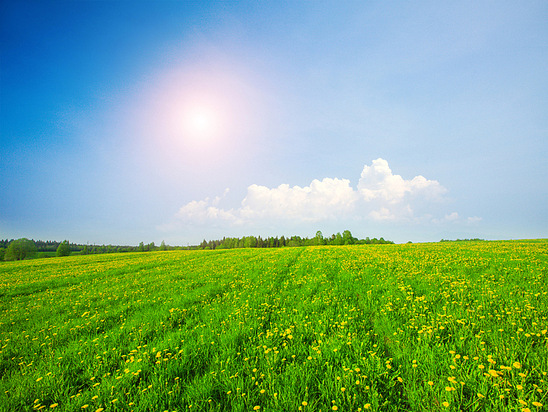 田地,蓝色,绿色,在下面,云,天空,美,水平画幅,无人,草坪
