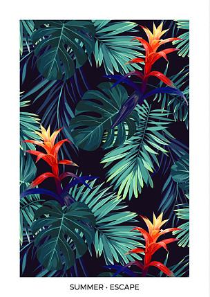明信片,热带气候,垂直画幅,背景,擎天属,干酪藤,棕榈叶,设计,花
