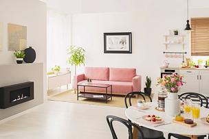 沙发,白色,桌子,公寓,室内,粉色,壁炉,花,摄影