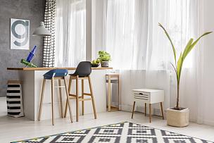 植物,简单,饭厅,葡萄酒,水平画幅,储物柜,无人,家庭生活,几何形状,灯