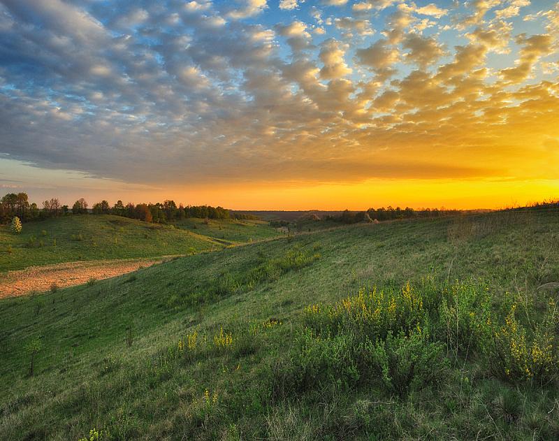 黎明,春天,早晨,雾,河流,山谷,非都市风光,田园风光,地形,户外