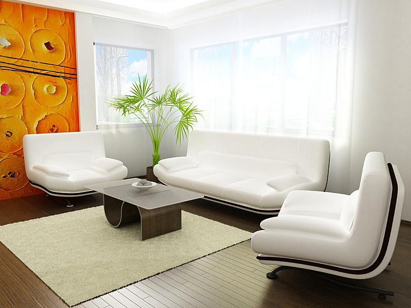 起居室,极简构图,住宅房间,水平画幅,建筑,无人,硬木地板,地毯,房屋,家具