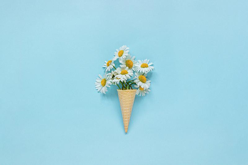 模板,夏天,明信片,概念,冰淇淋蛋卷,雏菊,花束,留白,甘菊,花