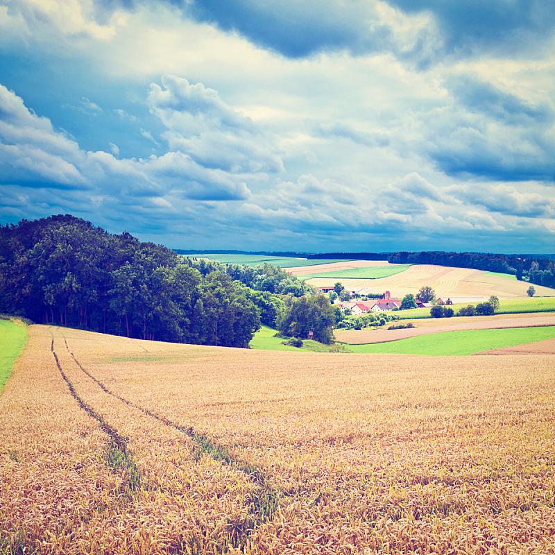 乡村,天空,山,草坪,夏天,户外,草,居住区,巴伐利亚,田地