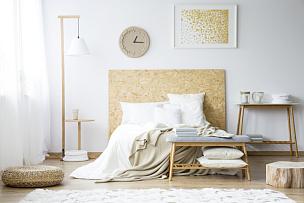 家具,卧室,木制,留白,长椅,水平画幅,无人,巨大的,家庭生活,灯
