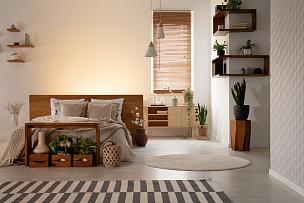 热,空的,植物,盒子,木制,双人床,室内,架子,墙,卧室