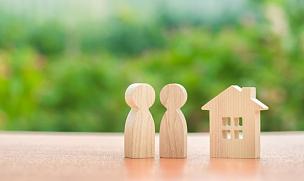 家庭,双亲家庭,两个物体,木制,概念,房地产,自然,动物的巢,房屋,小雕像