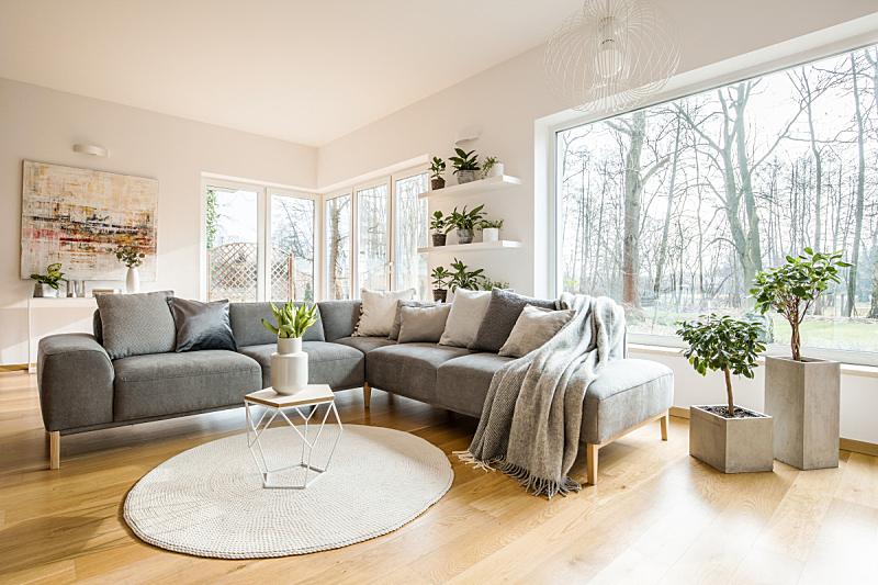 巨大的,沙发,白色,角落,清新,窗户,灰色,抽象,软垫,室内