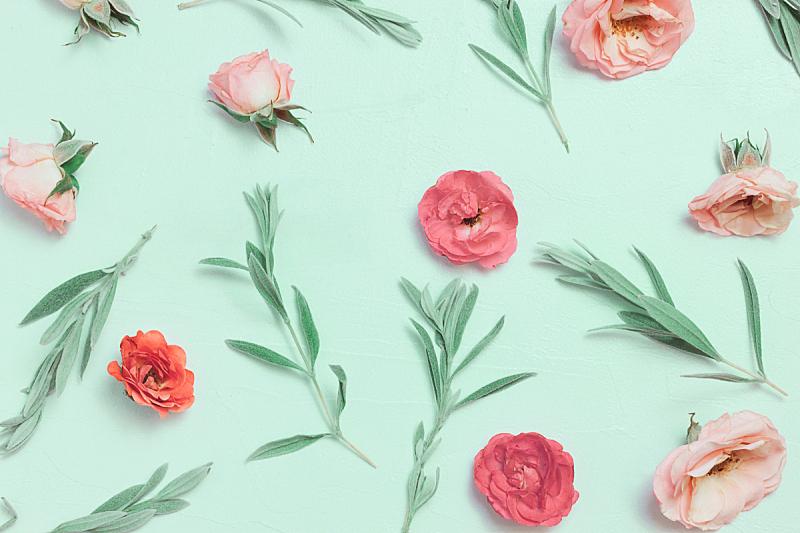玫瑰,粉色,粉色背景,自然美,动物头,周年纪念,贺卡,热情,纺织品,边框