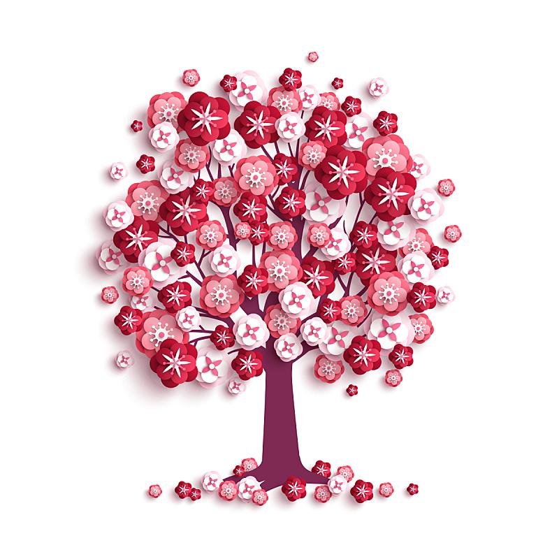 情人节卡,情人节,礼物,玫瑰色的,婚礼,二月,美,樱花,樱桃,绘画插图
