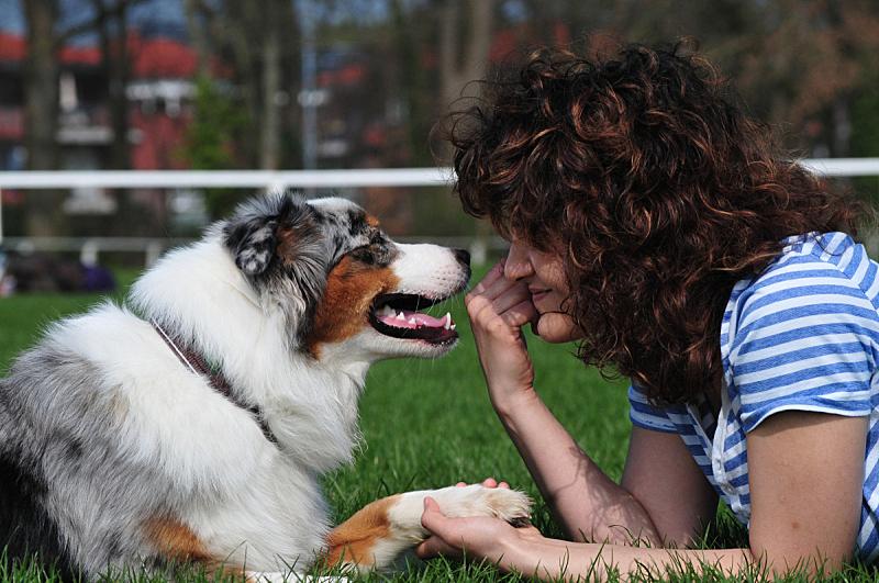 狗,青年女人,人生大事,纯种犬,牧羊犬,眼睛,公园,动物,拿着,人的眼睛