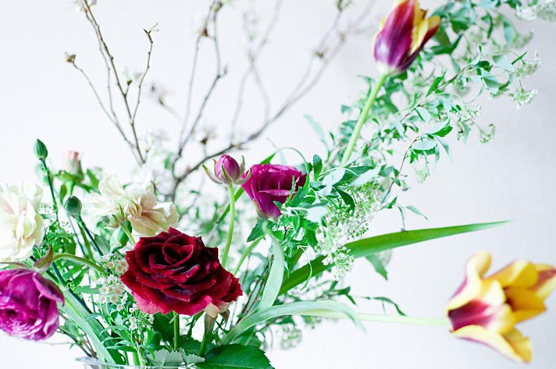 花瓶,康乃馨,水平画幅,樱花,郁金香,无人,毛莨属植物,春天,运动,植物