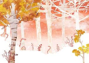 季节,风景插画,自然,秋天,植物,背景,风景,枫树,绘画插图,树