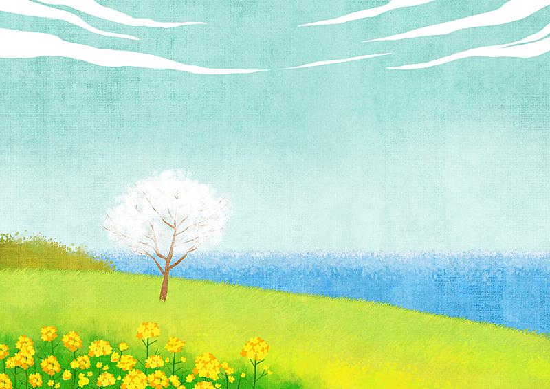 季节,背景,自然,风景,草,柔和色,春天,植物,花,树