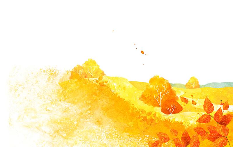 绘画插图,四季,秋天,插图画法,背景,银杏树,枫树,森林,季节,树