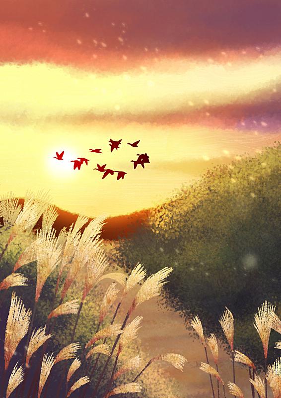 背景,四季,插图画法,自然,季节,秋天,风景,鸟类,日落,通路