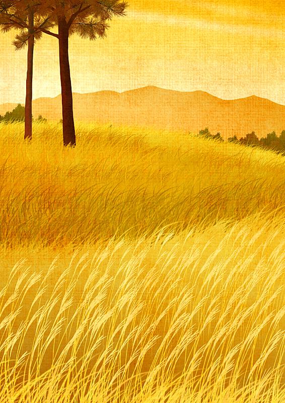自然,背景,草原,秋天,绘画插图,插图画法,植物,风景,芦苇,树