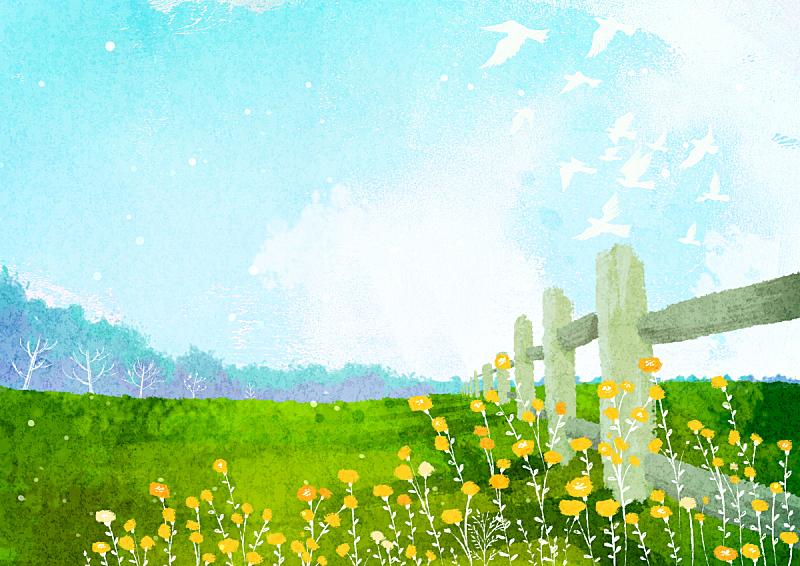 绘画插图,风景,春天,季节,草原,鸟类,田地,植物,花