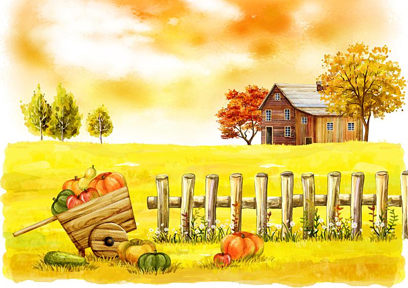 秋天,风景,插图画法,乡村,农作物,绘画插图,插画,云,农场,花