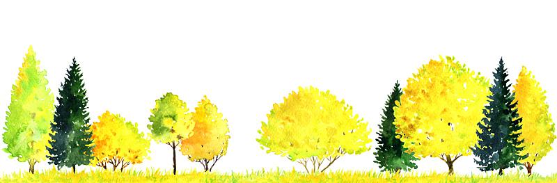 地形,水彩画,绘画插图,枝繁叶茂,王冠,卡通,草,橡树林地,彩色图片