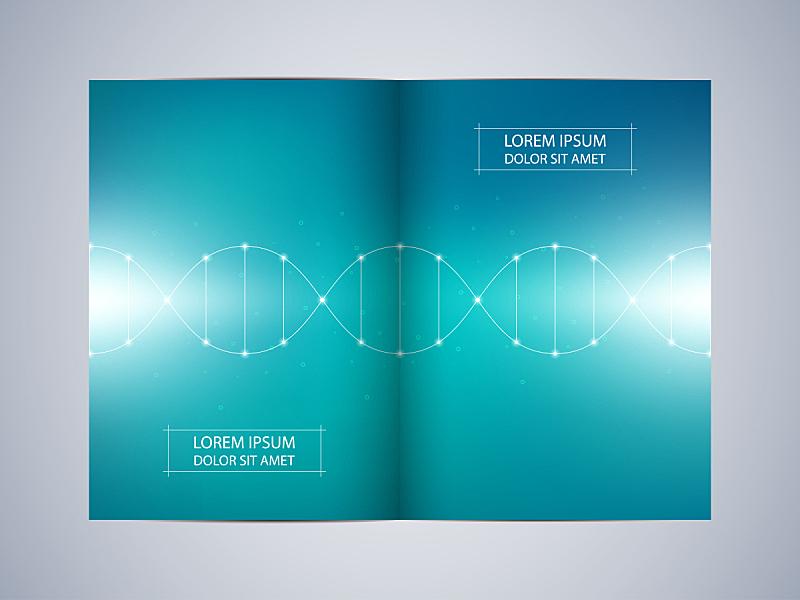 绘画插图,矢量,背景,小册子,计划书,鸟食盆,脱氧核糖核酸,折叠的,未来