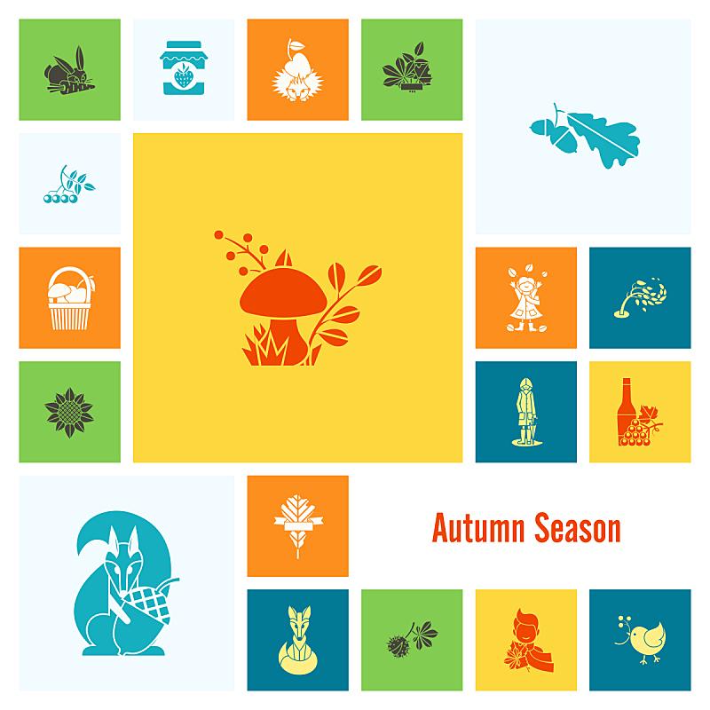 秋天,平坦的,符号,葡萄酒,枝繁叶茂,绘画插图,南瓜,计算机制图,计算机图形学,农作物