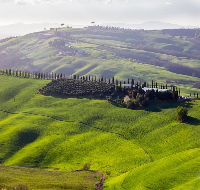 托斯卡纳区,田地,绿色,农业,热情,云,远距离,草,著名景点,春天