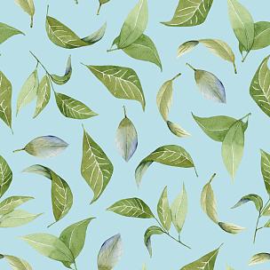 叶子,绿色,花纹,分离着色,蓝色背景,水彩画,动物手,水彩画颜料,一个物体,涂料