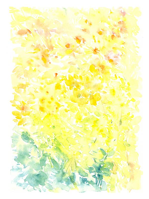 水彩画,动物手,水彩画颜料,复古风格,草,香水,涂料,春天,植物,背景