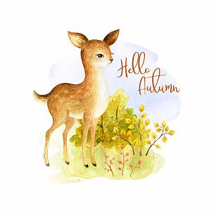 可爱的,绘画插图,小鹿,白色背景,水彩画,手工着色,分离着色,水彩画颜料,秋天,图像