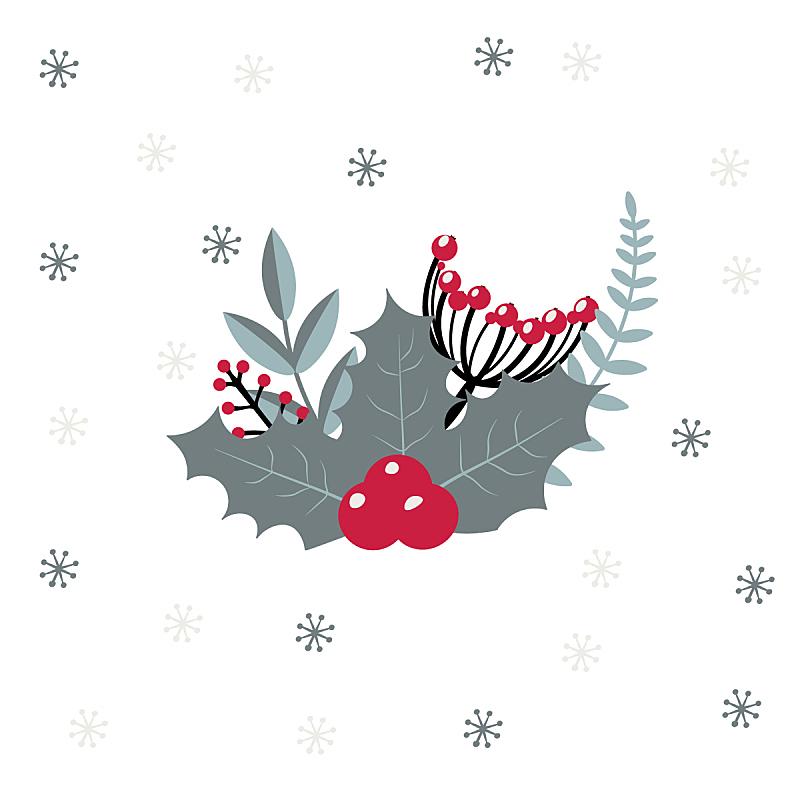 冬天,矢量,浆果,霜,红色,白色背景,绘画插图,贺卡,新的