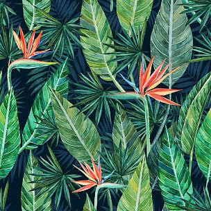 壁纸,四方连续纹样,背景,绘画插图,叶子,黑色,鸡尾酒,数码图形,纺织品,设计