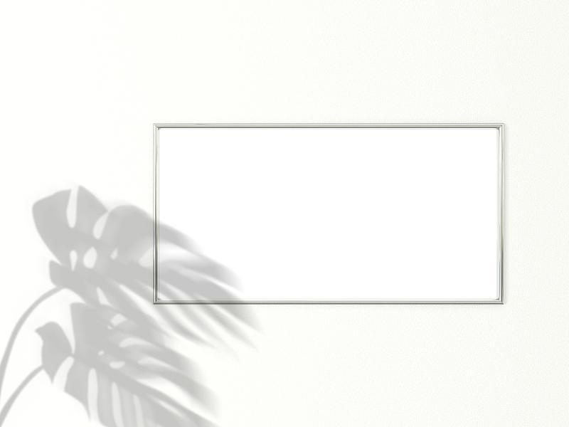 铬合金,干酪藤,叶子,阴影,水平画幅,三维图形,白色背景,两个物体,边框,摄影