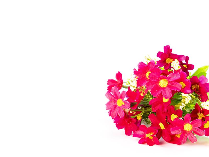 黄色,红色,白色背景,花束,请柬,贺卡,周年纪念卡,植物,生日卡,情书