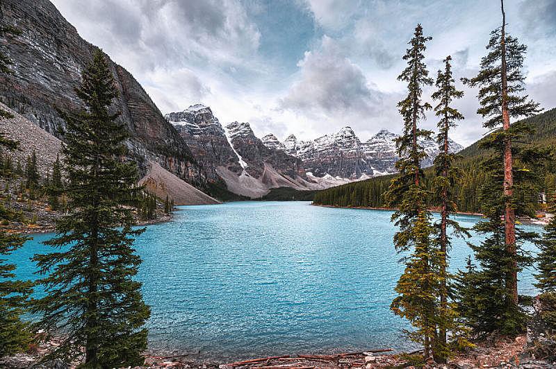 松树,梦莲湖,加拿大落基山脉,云景,云,户外,鲜绿色,山脉,自然,风景