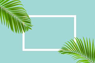 棕榈叶,自然,蓝色背景,彩色蜡笔