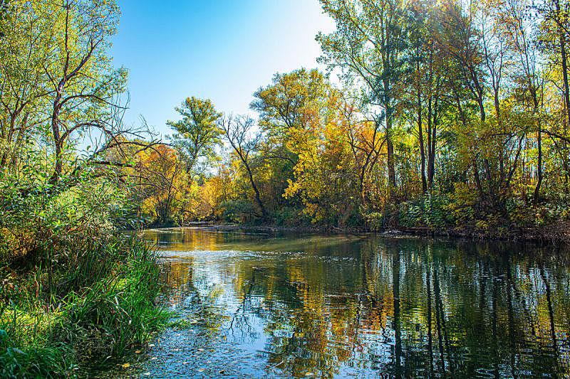 河流,秋天,地形,森林,海滩,平衡折角灯,绘画艺术品,与众不同,超现实主义的,环境