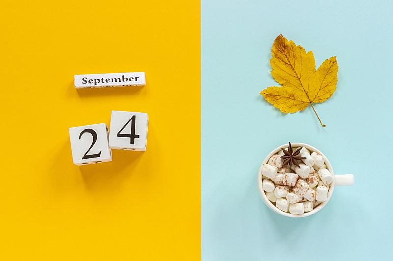 24,叶子,概念,平铺,九月,日历,秋天,黄色,棉花软糖