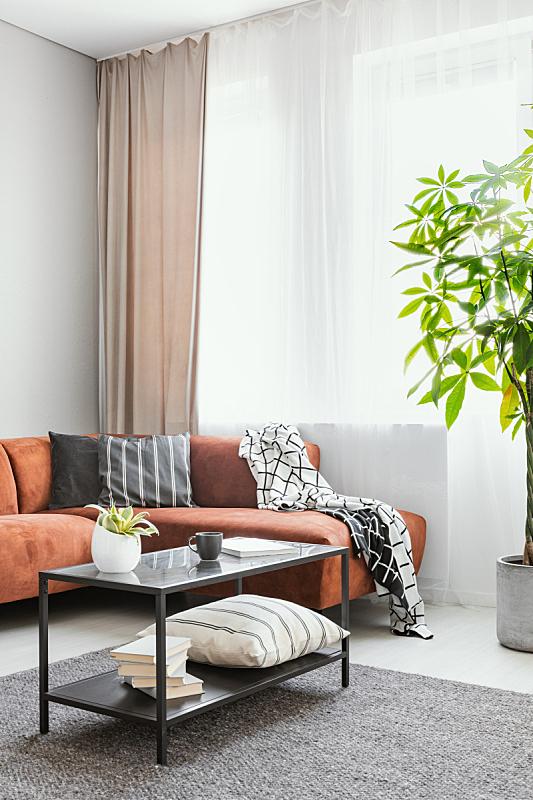 舒服,斯堪的纳维亚半岛,褐色,角落,沙发,时尚,宽的,起居室