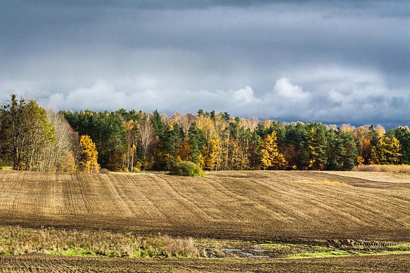 秋天,在上面,田地,地形,乌云,自然美,欧洲,自然,黄色,季节