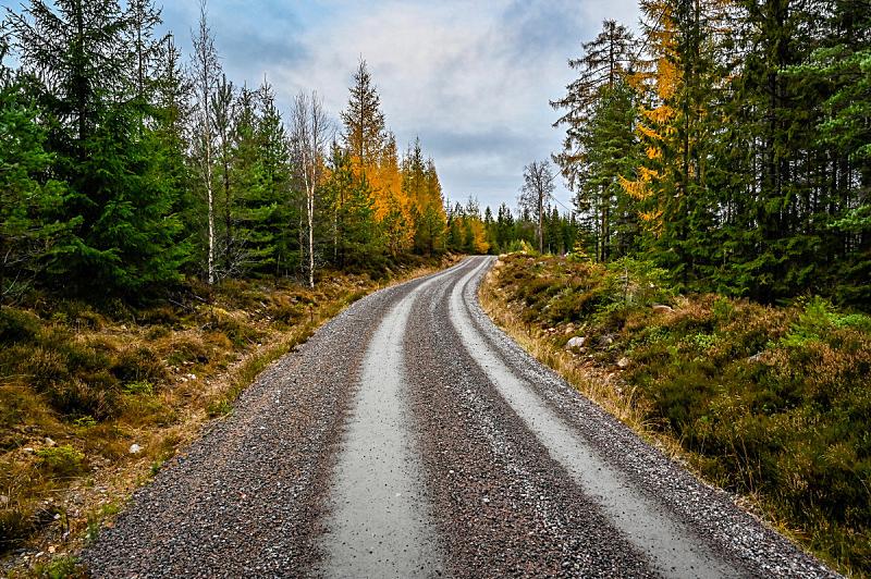 沙砾,秋天,路,森林,旅途,专门技术,瑞典,汽车,云,橙色