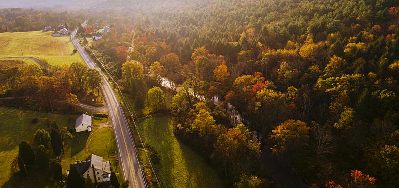 雾,森林,秋天,早晨,航拍视角,山,乡村路