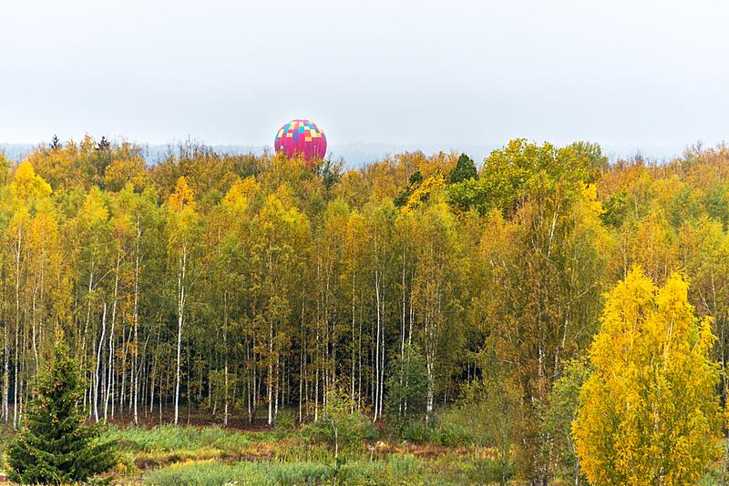 热气球,秋天,叶子,森林,在上面,寒冷,旅途,十月,拉脱维亚,自然界的状态